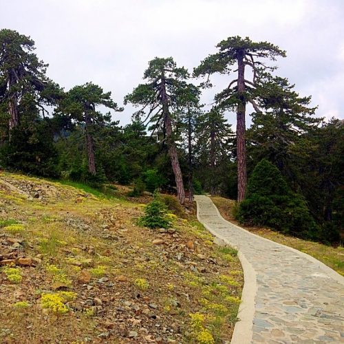 Troodos' Atalanta Nature Trail