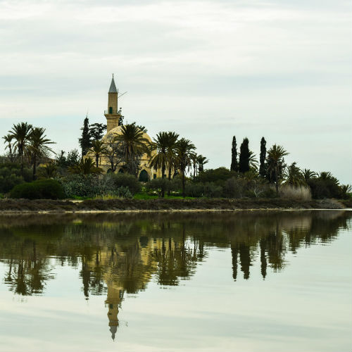 Visit the Larnaca Salt Lake: A Protected Habitat