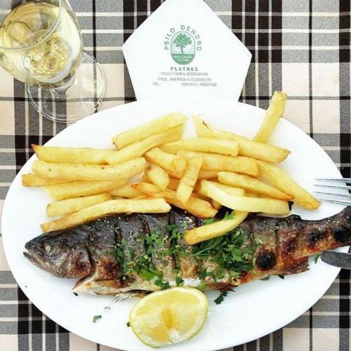 Psilo Dendro Restaurant