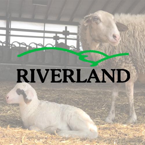 Riverland Dairy Bio Farm